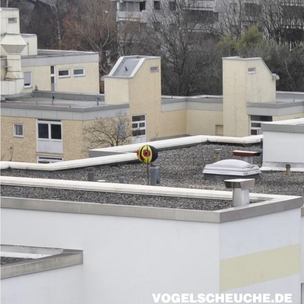 Vogelscheuchen TURBINE hält erfolgreich Raben vom Dach.