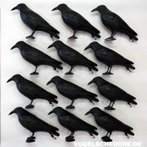 vogelscheuchen tierattrappe rabe stehend vogelabwehr haus und garten vogelscheuche de. Black Bedroom Furniture Sets. Home Design Ideas