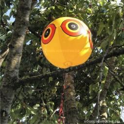 Ballon Installiert und keine Taube mehr im Kirschbaum !