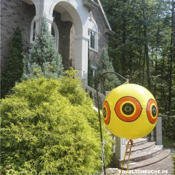 BALLON zur Spechtabwehr am Haus in den USA