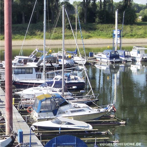 Möwenabwehr mit Ballon in Sport und Segelboot Marina