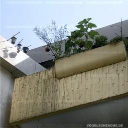 Mein Nachbar füttert die Tauben, Vogelabwehr möglich ?