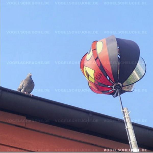 Tauben brüten unter Solarpaneelen, Turbine hilft nicht!