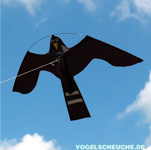 vogelscheuchen drachen falke 140 cm vogelscheuche de. Black Bedroom Furniture Sets. Home Design Ideas