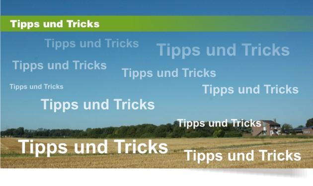 Vogelabwehr Tipps und Anleitungen